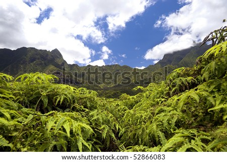 This image shows the Iao Valley on Maui