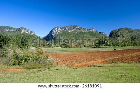 This image shows the lush landscape of Vinales, Cuba.