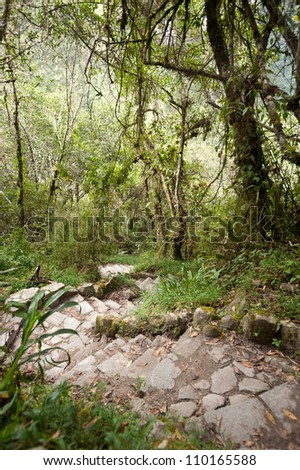 This image shows the pathway up to Manchu Picchu, Peru.