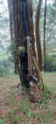 this is a airgun calliber .177 or 4.5mm in the forest, the series of produk from