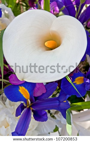 This is a bouquet of flowers centering on a beautiful white calla lily and purple dutch iris around it.  Vertical with no people in a closeup view. - stock photo