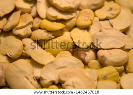 This is a closeup photograph of fava beans