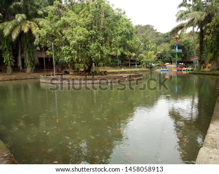 This is a fish pond in Bontani Park Jember Stock fotó ©