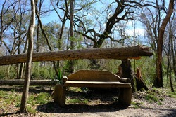 This is a photo of a handmade outdoor bench in the hiking trails of Acadiana Park within Lafayette Louisiana.