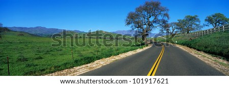 This is a road in spring in the Santa Ynez Mountains,. There are oak trees surrounding the road and a green field.