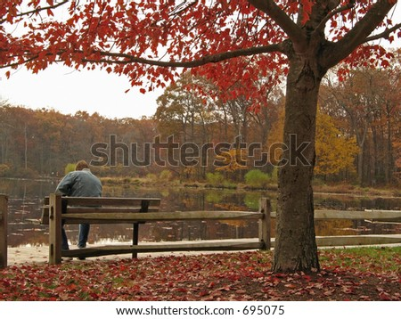 This is a shot of a man sitting by a Fall lake contemplating  the scene.