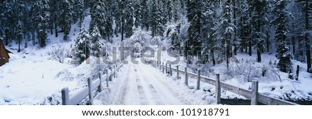This is a small snow covered road after a winter snow storm. The road in front is a bridge with visible tire tracks from a car that has crossed the bridge.