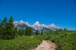 This is a view of the trail that leads to Taggart Lake. Shown here are the South Teton, Nez Perce, Middle Teton, Grand Teton, Mt. Owen and Teewinot (left to right) peaks. Grand Teton National Park