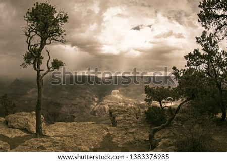 This is a Vintage Style Photograph of the Grand Canyon with Trees, Mountains, Clouds, Rain and Dramatic Sky in Arizona, USA.