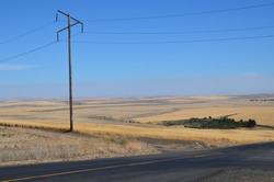 This is an American road with wheat fields and an oldfashioned elektricity pole.