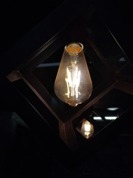 This is an image of a incandescent bulb.It is used in both interior and exterior designing. It is a contemporary style. This is also known as filment lamps. Lighted bulbs can convey a lot of messages.
