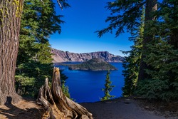 This is an image of Crater Lake in Oregon, encompassed by leaning evergreen trees and a large tree stump. Wizard Island is seen in the distance.