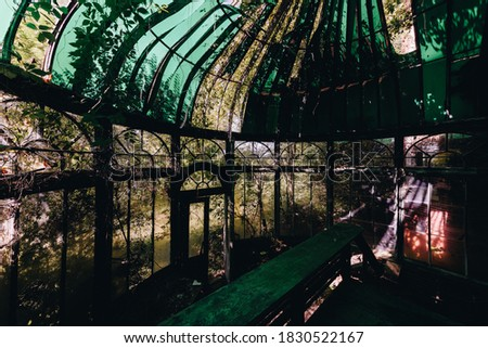 This is an interior view of the conservatory/greenhouse with an opaque green glass covering at the long-abandoned and historic Dunnington Mansion in Farmville, Virginia. Сток-фото ©