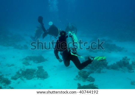 This is an underwater picture of some divers, taken from behind of them in the Red Sea, Egypt #40744192