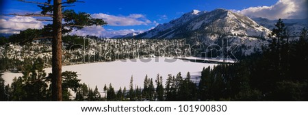 This is Mount Sneffels in the San Juan Mountains. It is near the Dallas Divide. It shows aspens after a winter snow storm.