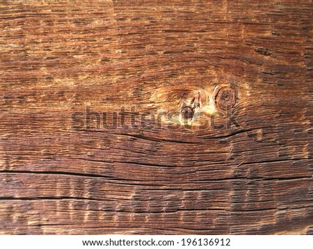 This is structure of wood board. Closeup
