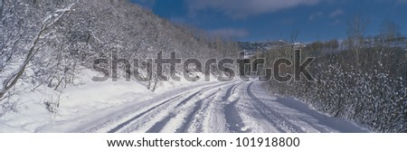 This is the Last Dollar Road after a heavy snow. It is near the Dallas Divide in the San Juan Mountains.