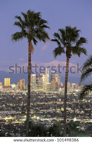 This is the Los Angeles skyline with two palm trees in the winter at dusk. Snowy Mount Baldy is in the background.