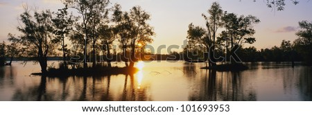 This is the wildlife refuge at Lake Fausse Pointe State park at sunset. The cypress trees are growing all around the lake and on islands in the water.