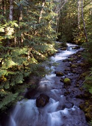 This is the Zigzag River near Mt. Hood in Oregon.