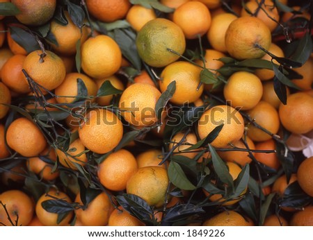 This jumble of Sicilian Oranges is on display at Rome's market in Campo Dei'Fiori.