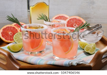 This magnificent cocktail of fresh pink Palomas will change the way you look at tequila. A festive drink is ideal for brunch, parties and holidays. Foto stock ©