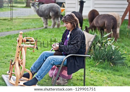 This middle aged country woman is sitting and spinning alpaca wool into yarn, with the alpacas in the background.