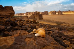 This photo was taken in Al Ula in saudia arabia 12 Nov 2017 for Elephant rock and mountains