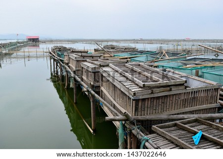 this pic show many wooden or bamboo cages for rearing econmic fish, crabs or aquatic animal at a large lake farm, aquafarming concept.