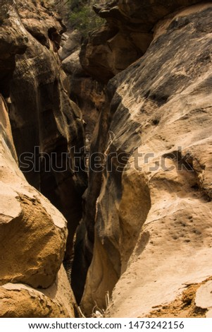This slot canyon is hidden almost within arms reach of a popular hiking trail at Caprock Canyons State Park. Easily found if one does enough research.