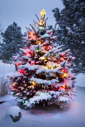 This Snow Covered Christmas Tree stands out brightly against the dark blue tones of this snow covered scene.