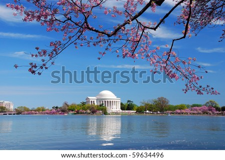 Thomas Jefferson national memorial with cherry blossom in Washington DC.