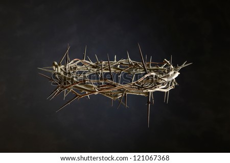 Thorn Crown isolated on a neutral background