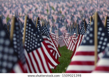 Those flags represent our men and women who made the greatest sacrifice and we honor them.  #1509021398