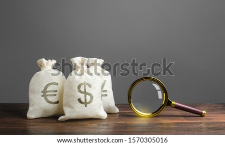Three bags of money and a magnifying glass. Search for investments and financing for projects. Saving funds in other currencies. Investment and loan portfolios. Bonds and stock exchanges.