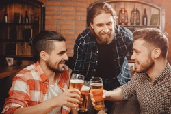 Three bearded men in farm-style clothing, plaid shirts, drinking beer Irish pub, clinking glasses toasting, chin-chin