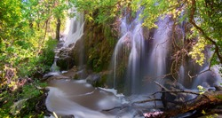 Three beautiful natural waterfalls, known as Gorman Falls, cascade down a wall of rocks at Colorado Bend State Park in the central Texas Hill Country.
