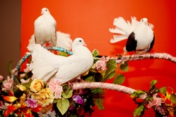Three beautiful thoroughbred domestic pigeons with beautiful fan tails, wedding birds sitting on a  flower stand