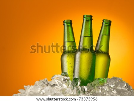 Three beer bottles getting cool in ice cubes. Isolated on a orange.