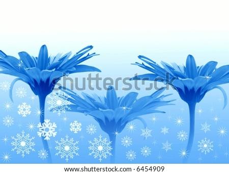 Three Blue flowers - stock photo
