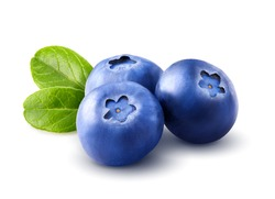 Three blueberries. Berry isolated with leaves on white background. Clipping path. Close up. Macro.