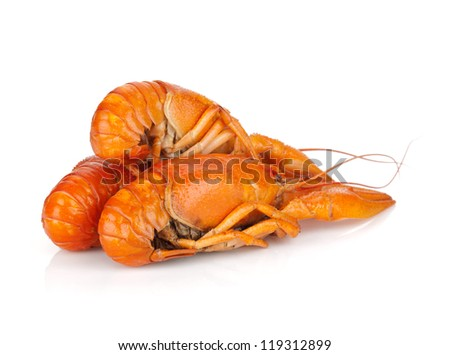 Three boiled crayfishes. Isolated on a white background