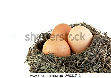 Three brown eggs in  nest on a white background.