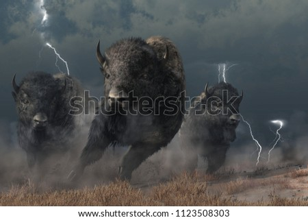 Three buffalo stampede across the North American prairie. Driven by the flashing lightning and booming thunder of a storm, these bison raise a cloud of dust as they run.  3D Rendering