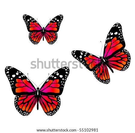 Бабочка мужская своими руками