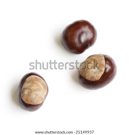 three chestnuts isolated on white background