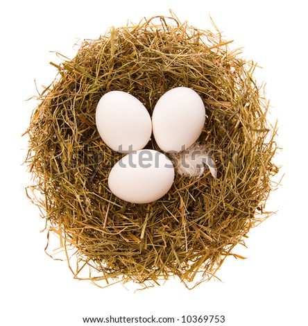 Three chicken white eggs in a small nest from a dry grass on a white background