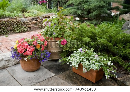 Three clay pot garden containers overflowing with annuals like geraniums, pansies, lobelia and petunias. Situated on a stone walkway, there are evergreens, meadow anemones and sedum in a rock wall. #740961433