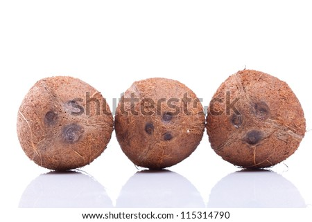 three coconuts in a line over a white background