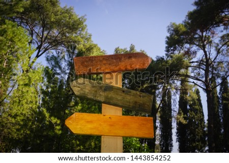 Three colorful and empty signboards isolated on forest background. Wooden vintage signs. #1443854252